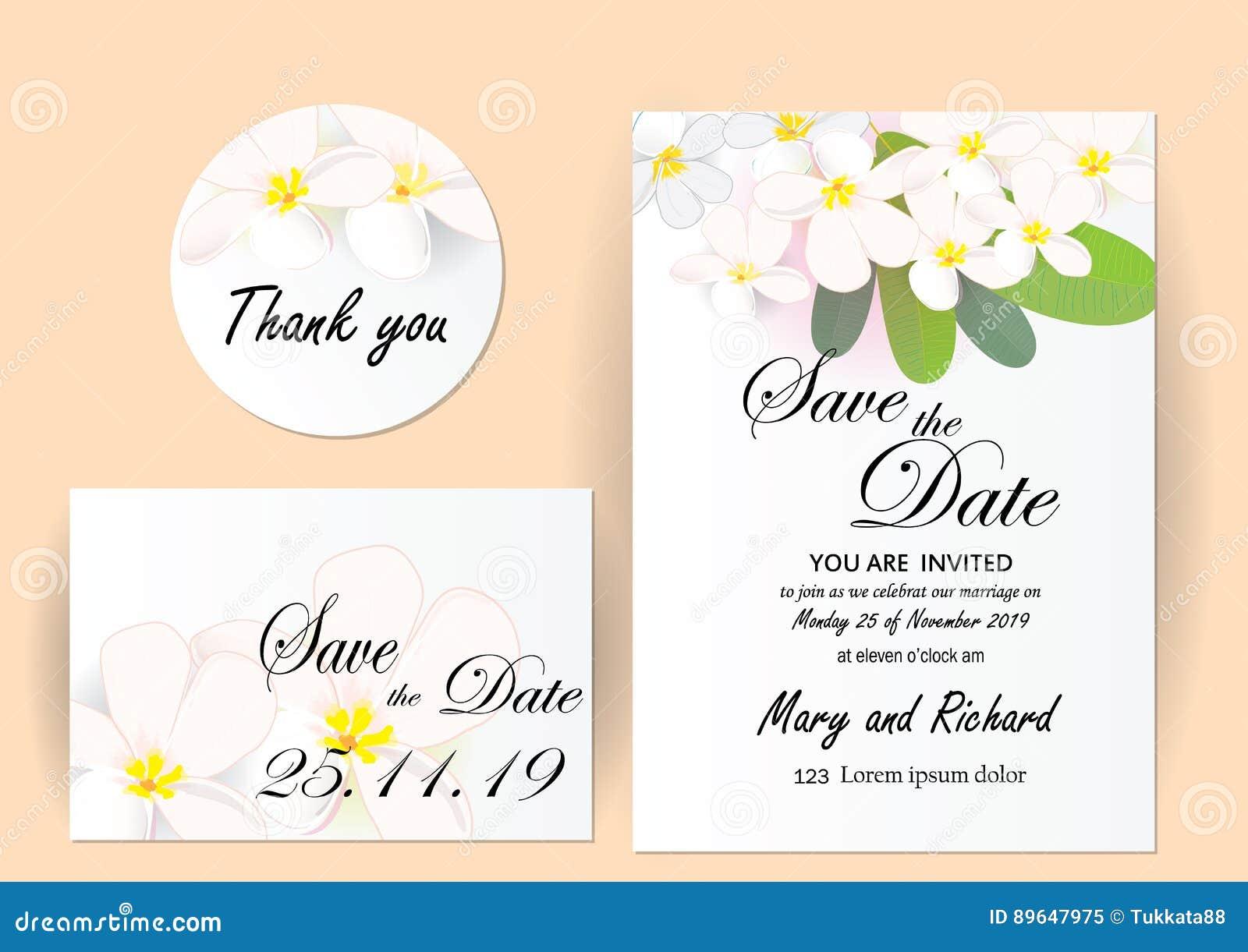 Wedding Invitation Card Flowers Jasmine Stock Vector