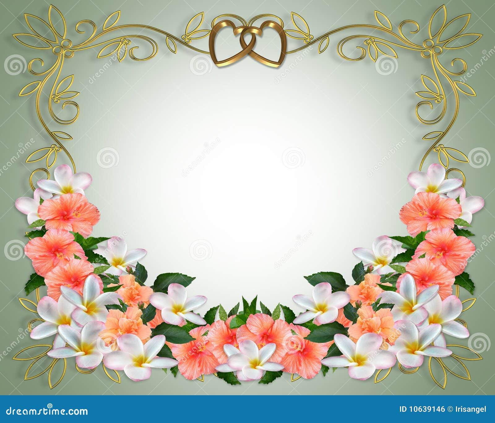 Wedding Invitation Hibiscus Plumeria Stock Illustration ...