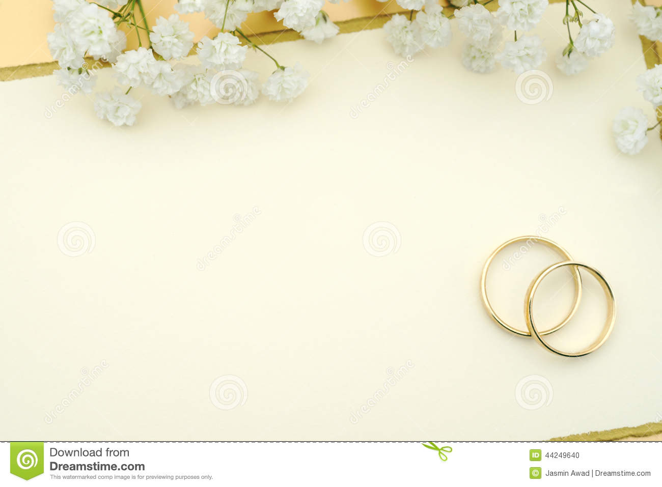 Wedding invitation stock photo Image of ring invitation 44249640 – Blank Wedding Invitation Card Stock