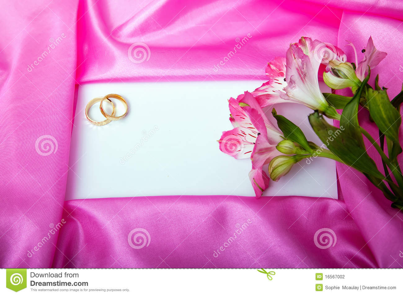 Wedding invite blank stock photo. Image of announcement - 16567002