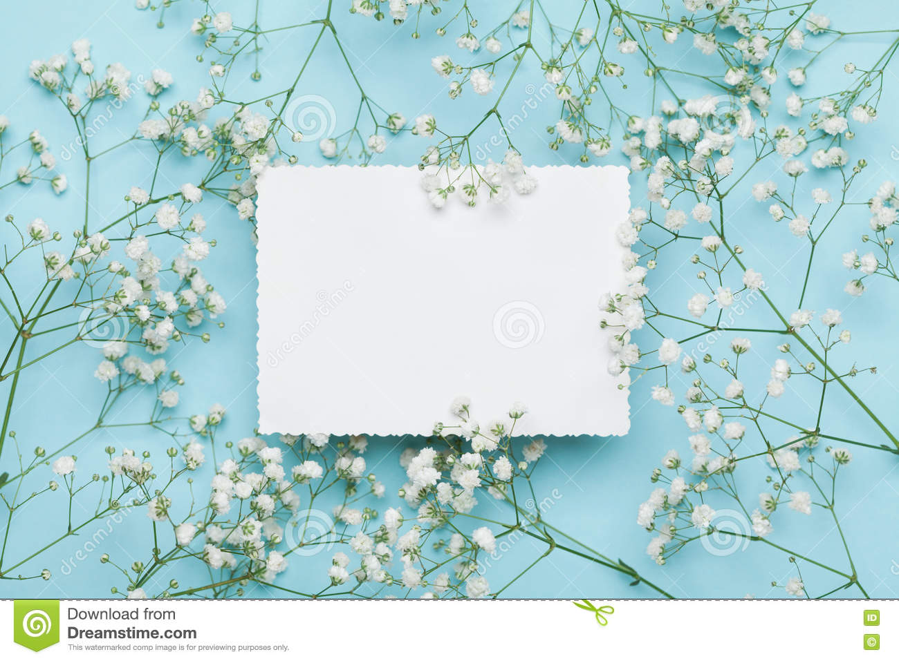 Wedding Mockup With White Paper List And Flowers Gypsophila On Blue