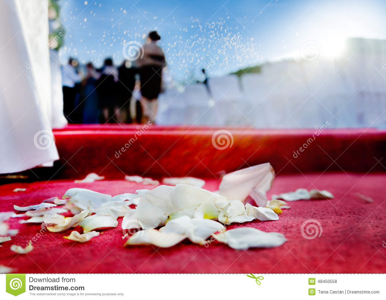 Wedding Petals Of Roses On Red Carpet Stock Photo Image Of Bouquet