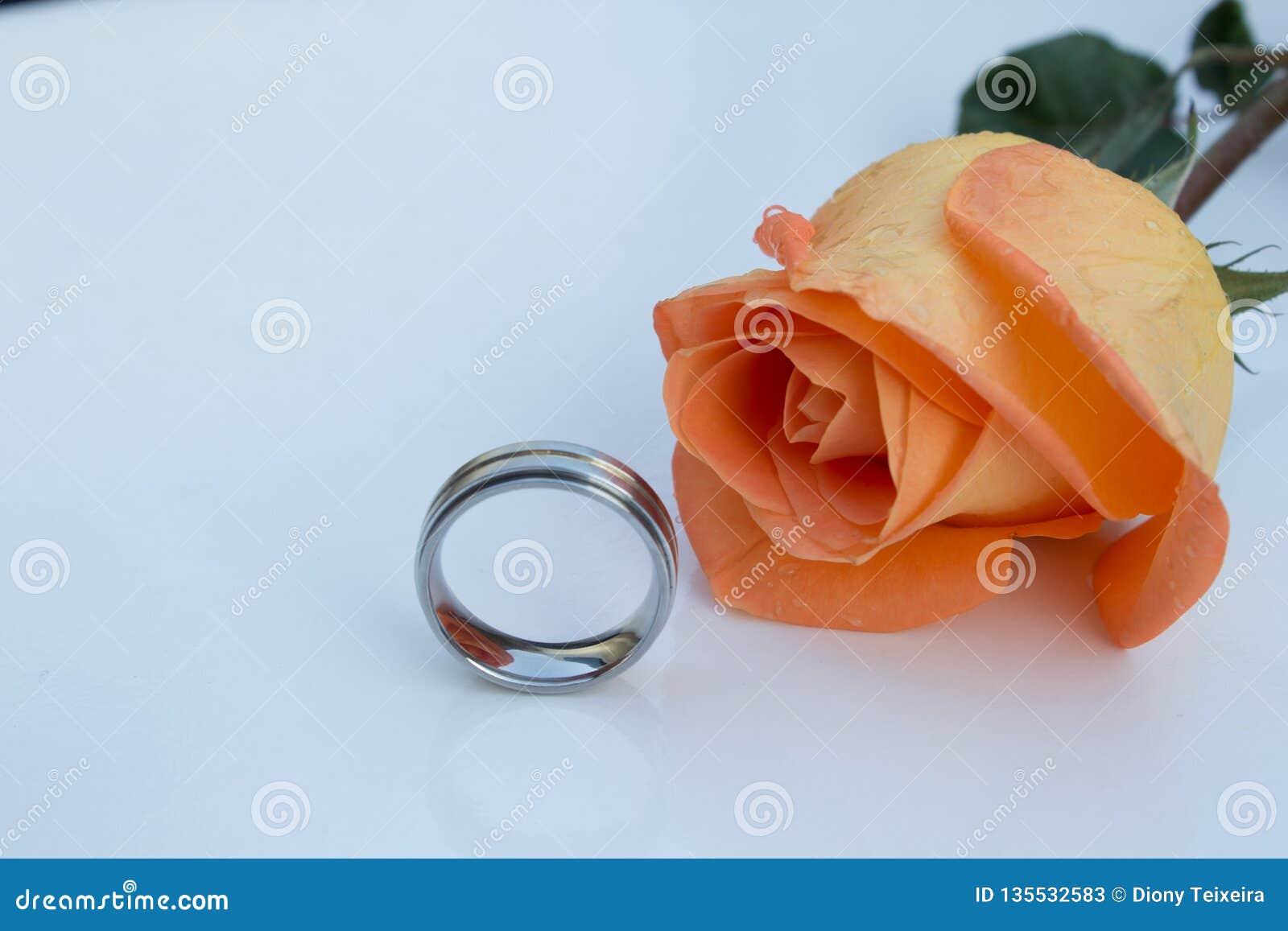 Wedding ring chromed and orange rose, on white background