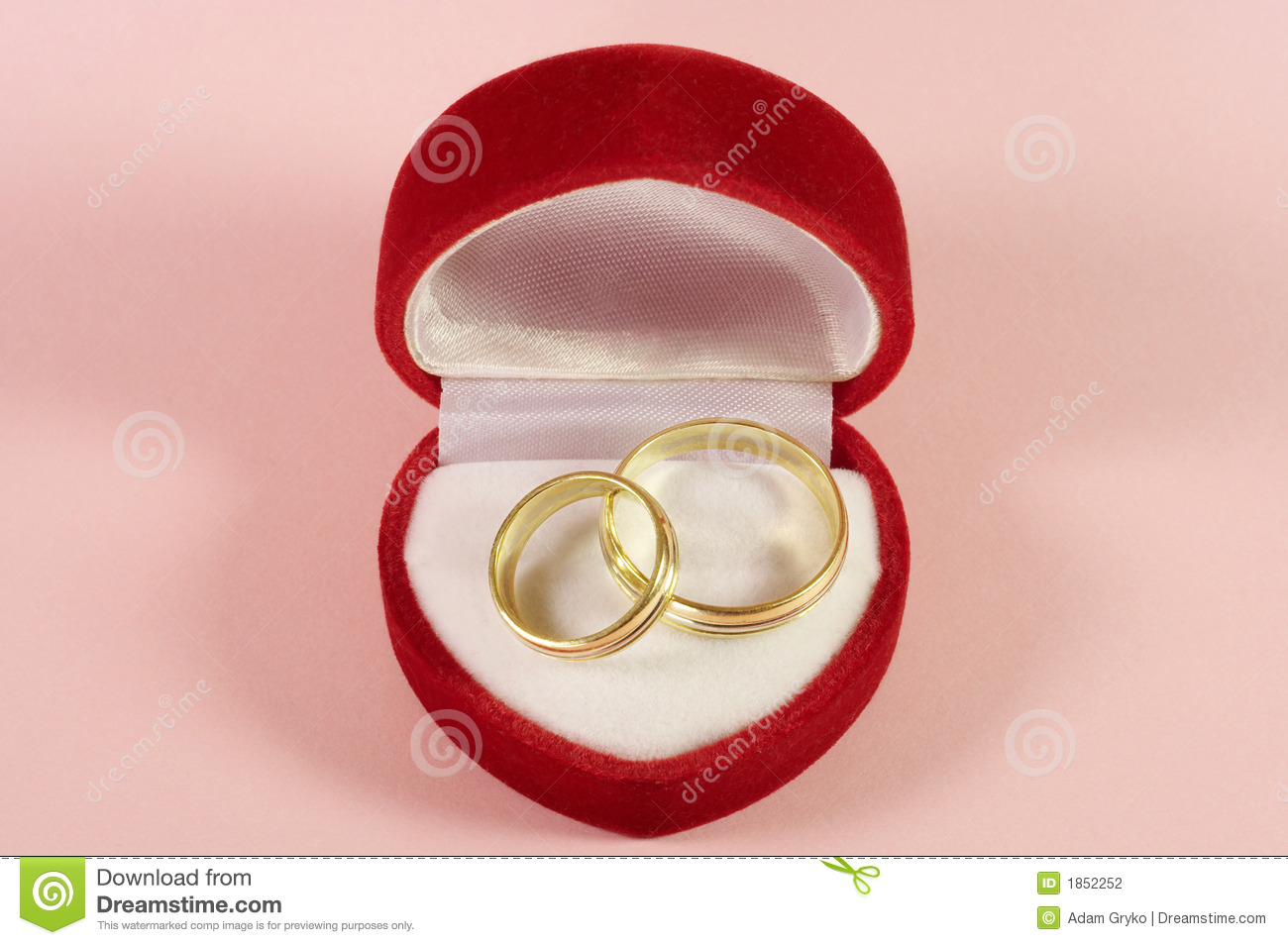 Wedding rings stock photo. Image of rings, husband, love - 1852252