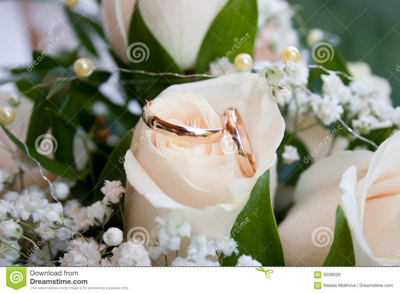 Wedding rings stock photo  Image of newly, couple, rings