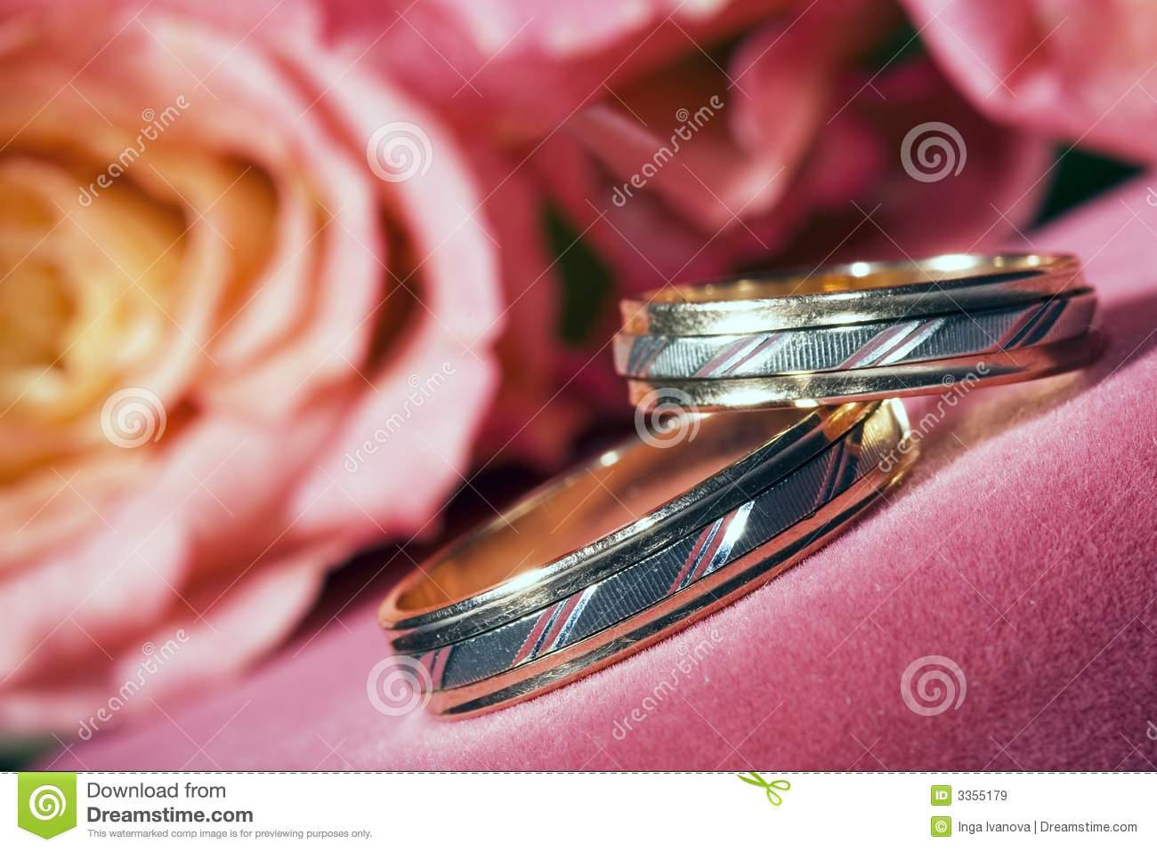Wedding Rings stock image. Image of concept, beauty, detail - 3355179