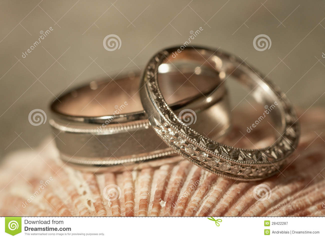 rings wedding fascinating theme beach new inspired