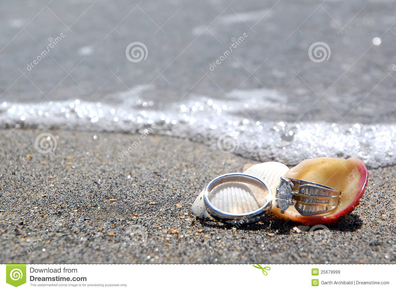 wedding royalty rings stock with online free beach seashells picture