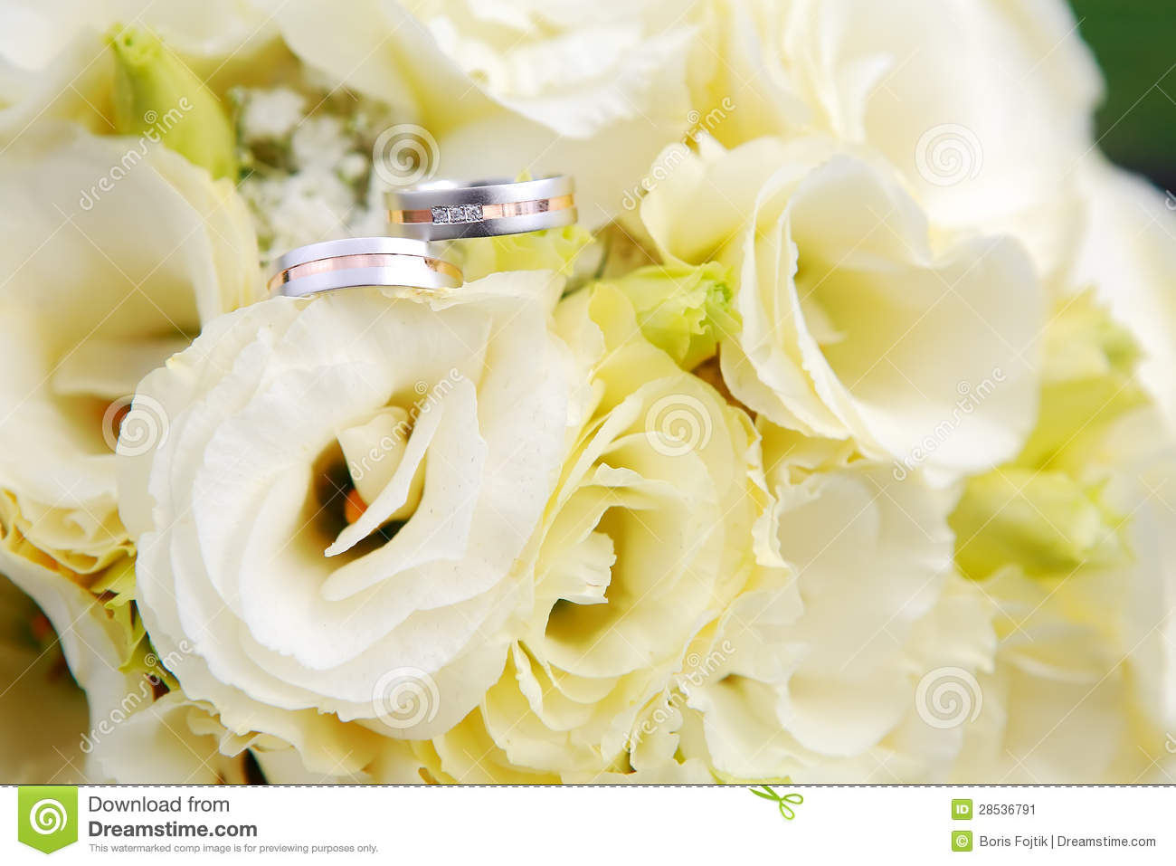 Wedding Rings With Flowers Stock Image Image 28536791