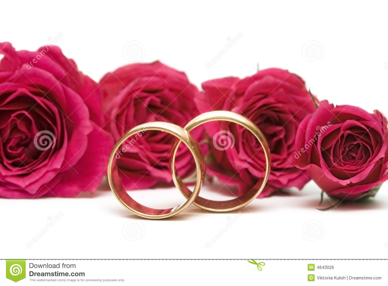Wedding Rings With Flowers Royalty Free Stock Image Image