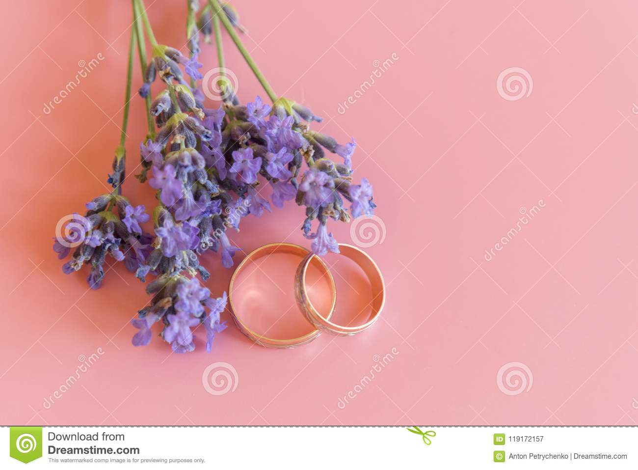Wedding Rings And Lavender Flowers On A Pink Background Stock Image ...