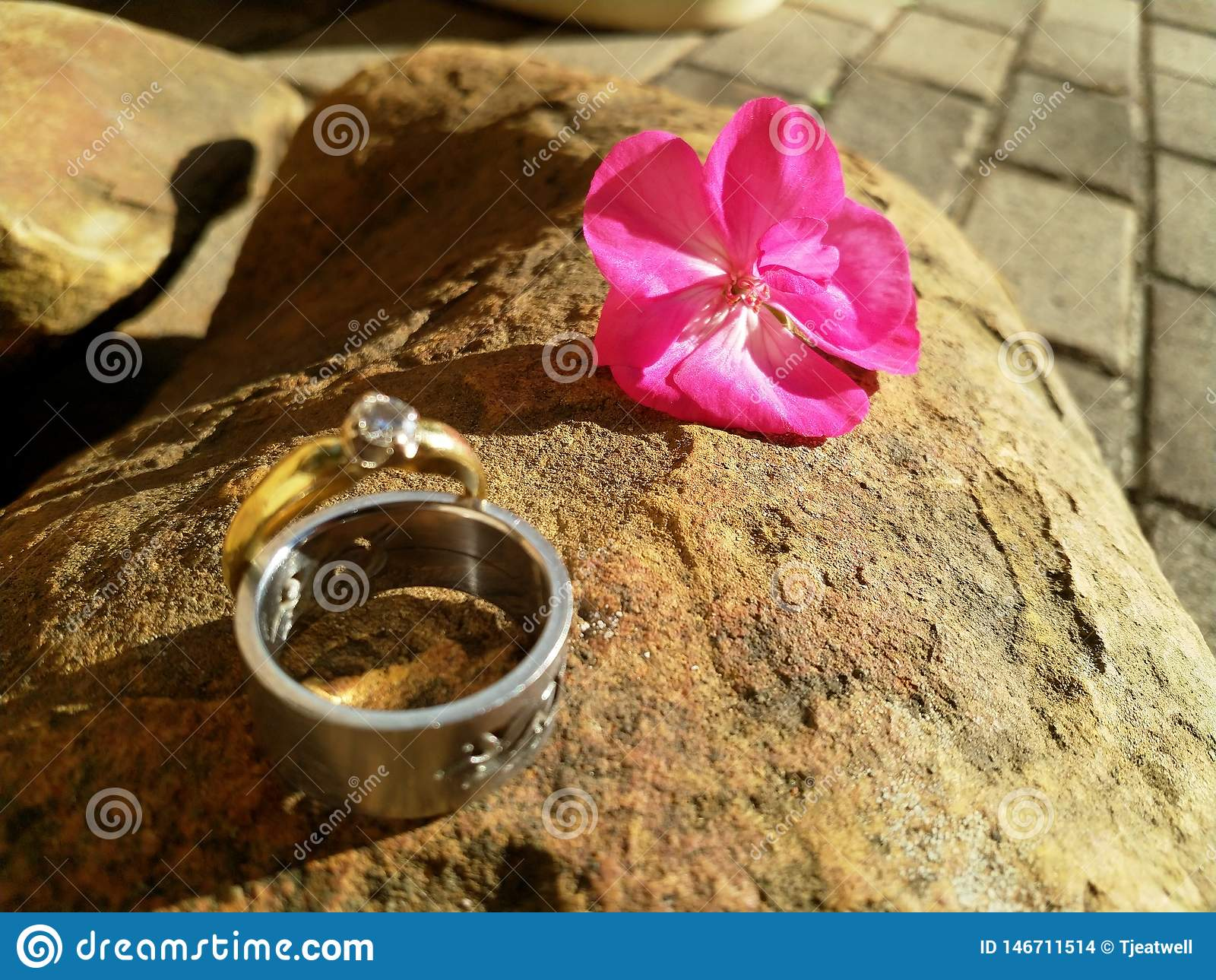 Wedding Rings on a Rock Surface