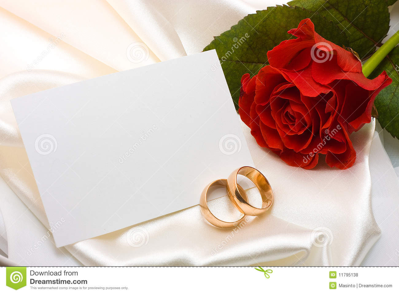 Wedding rings, rose and card
