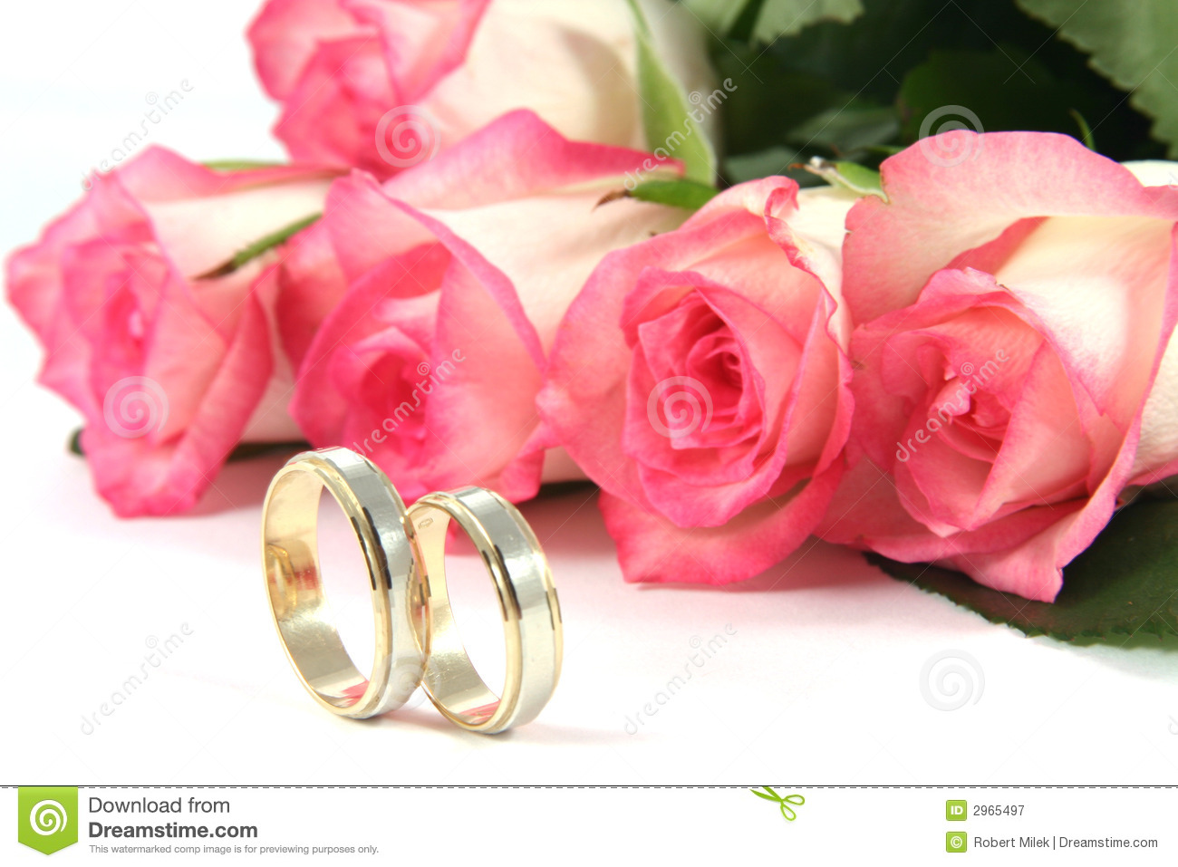 Wedding rings and roses stock image. Image of render, over - 2965497