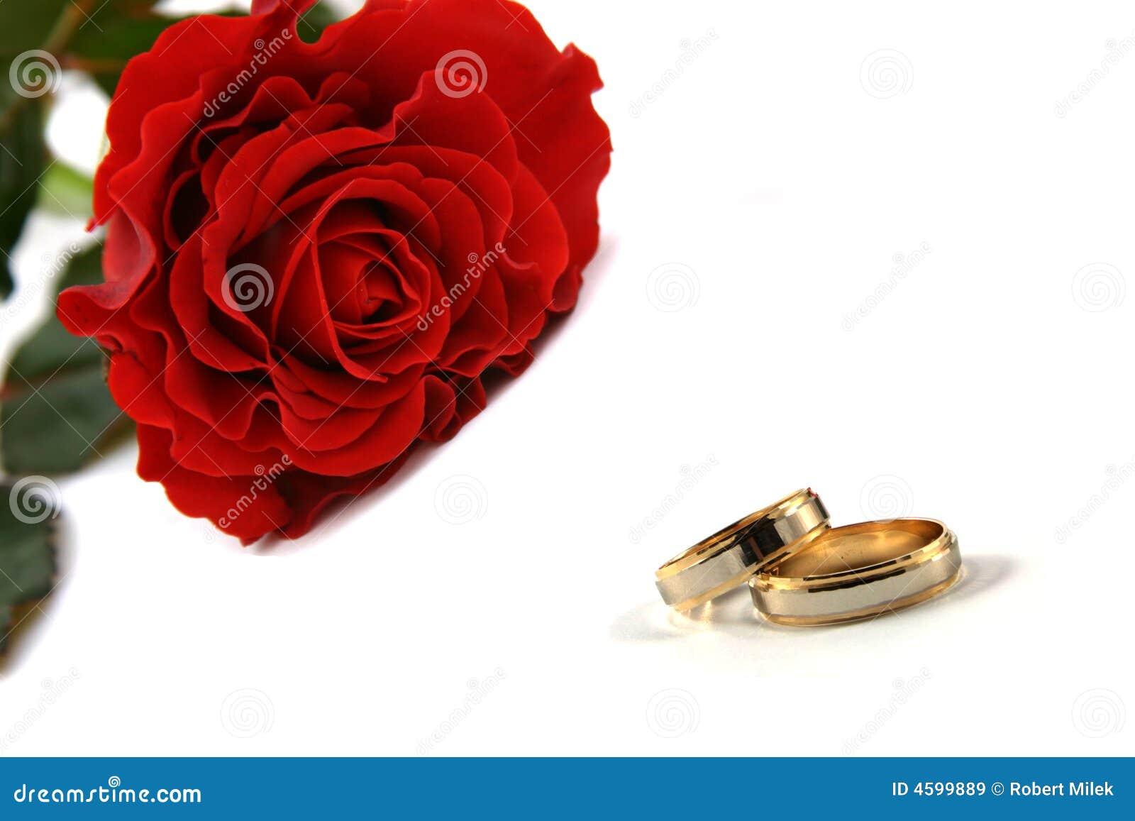Best new wedding rings