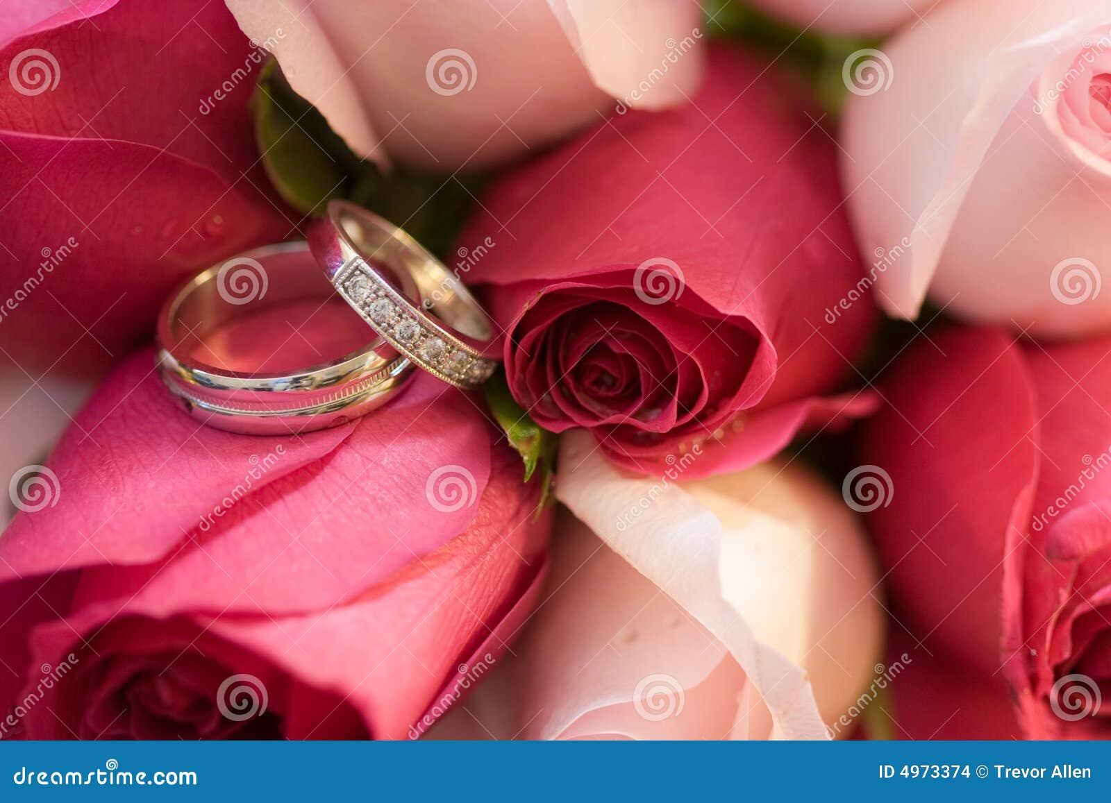 Wedding Rings in Roses
