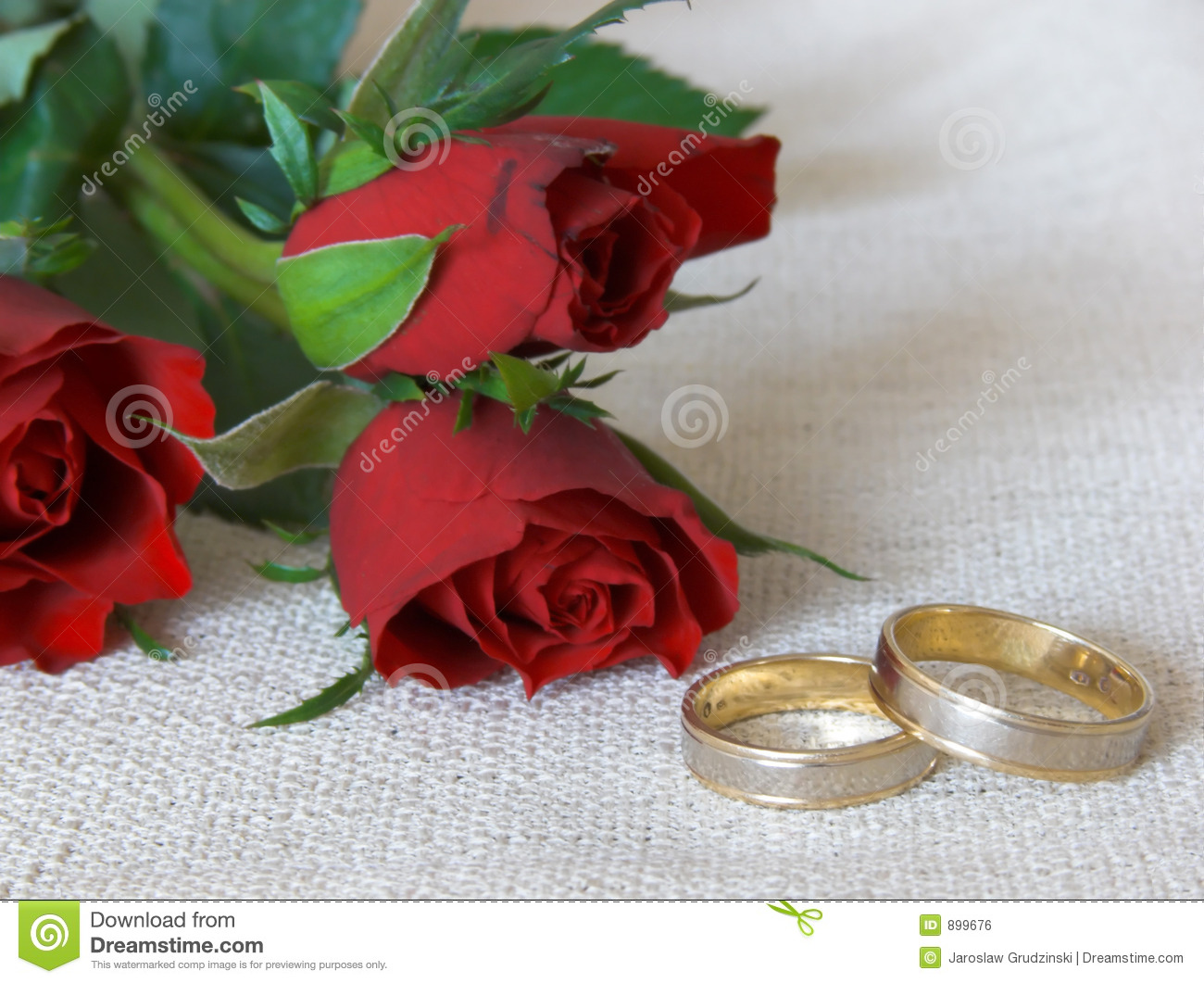 Wedding rings and roses stock photo Image of jewelery 899676