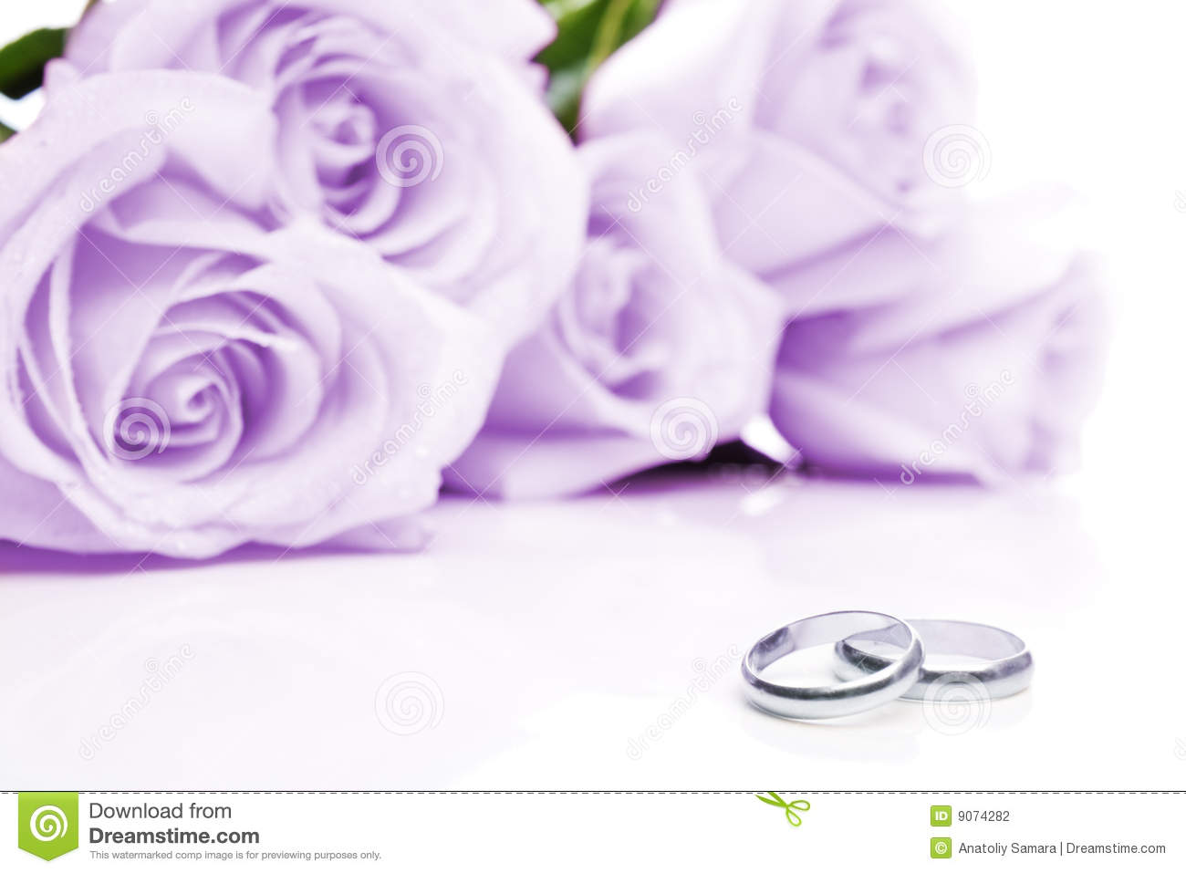 Wedding Rings And Roses Stock Photography