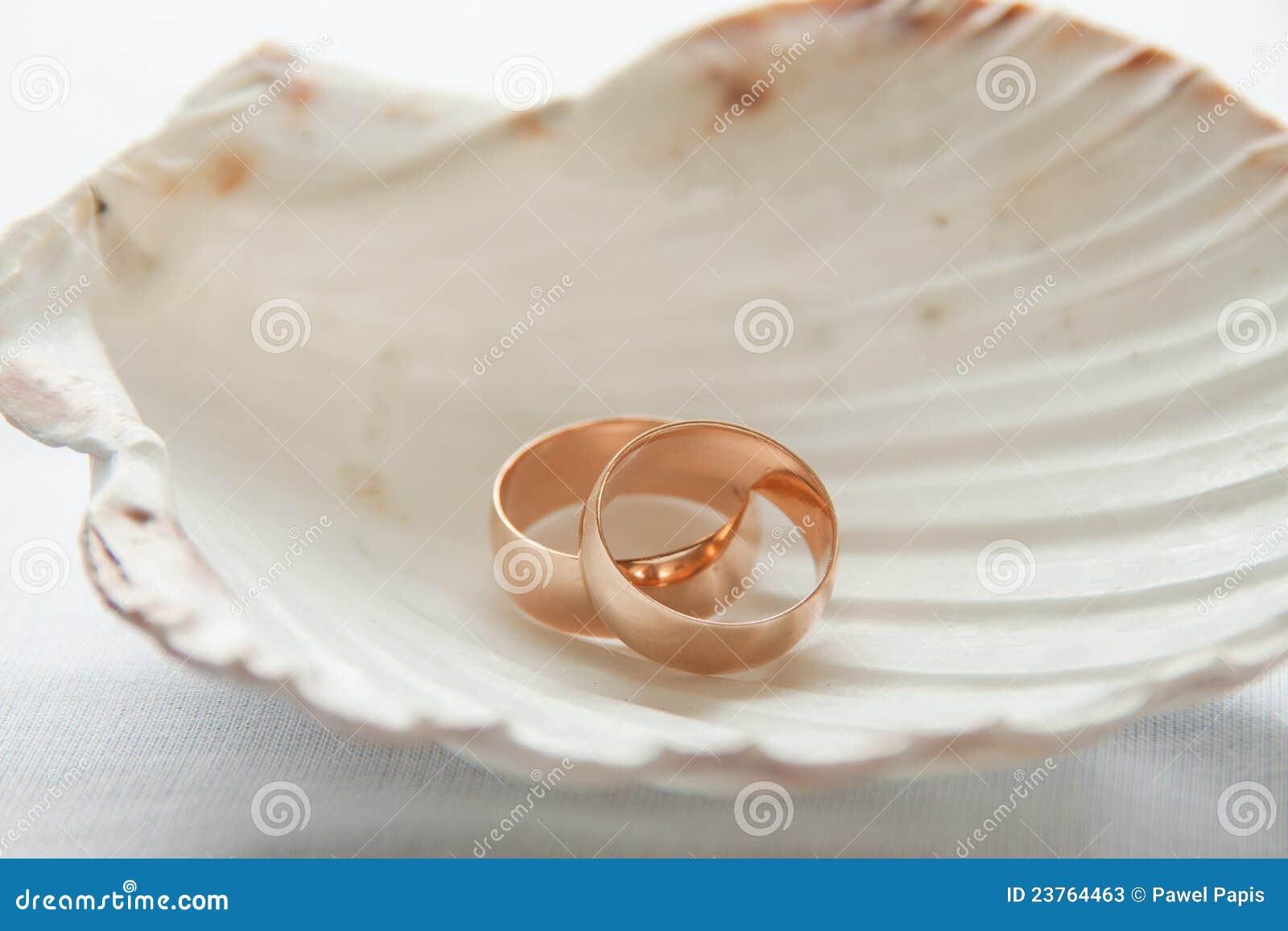 Couple Rings Seashell