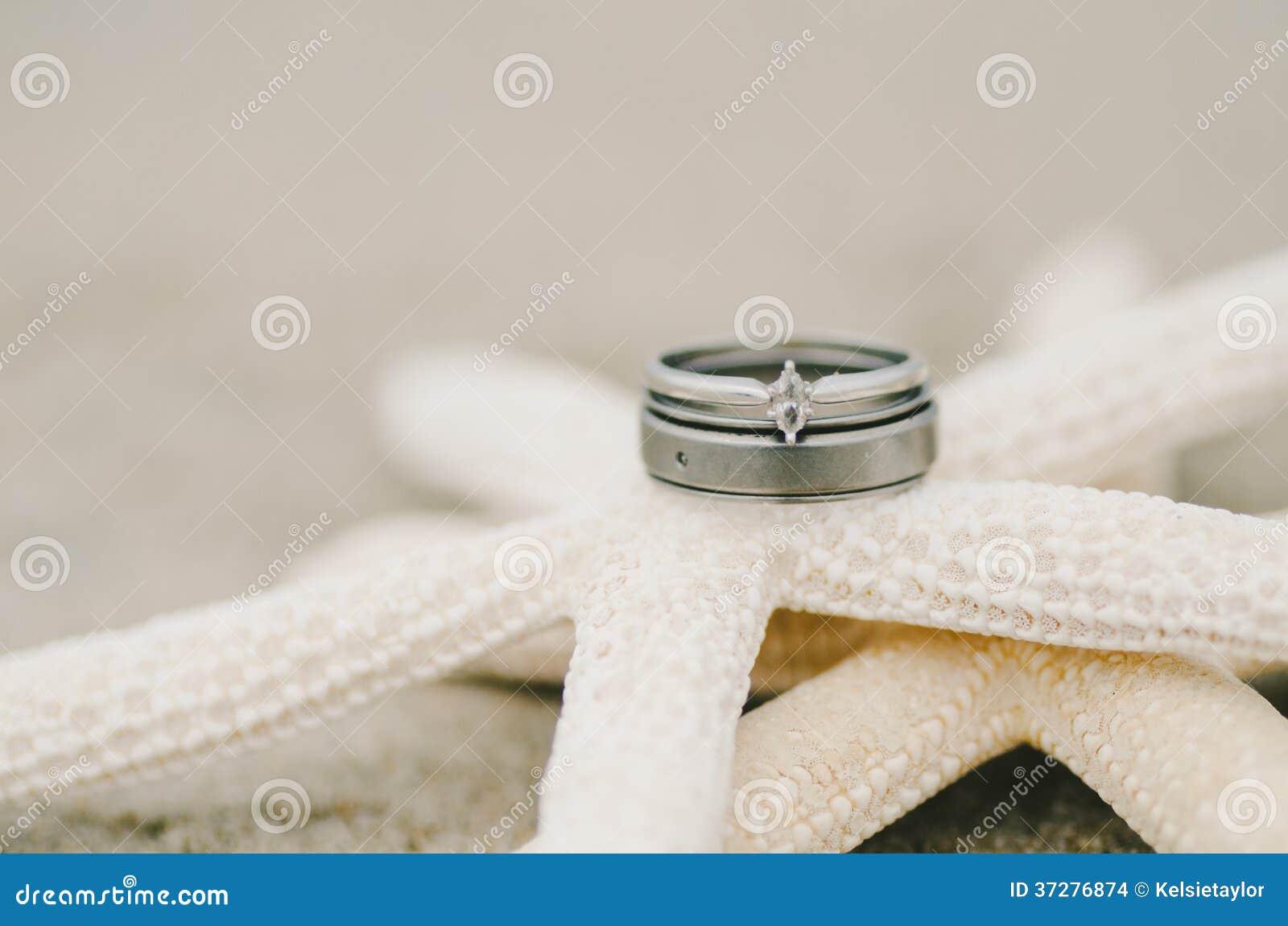 Wedding Ring Starfish stock photo Image of summer beach 37276874