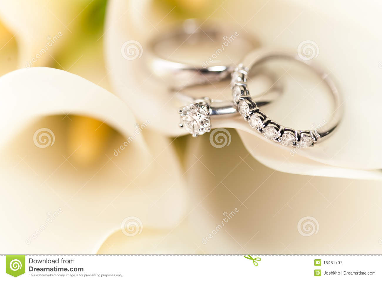 wedding rings on white flowers royalty free stock