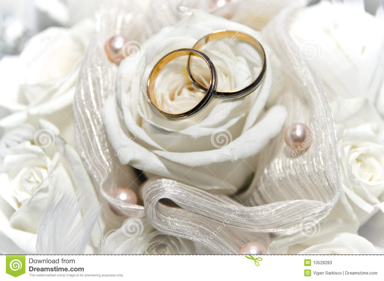 Wedding Rings On The White Rose Stock Image Image of rings ring