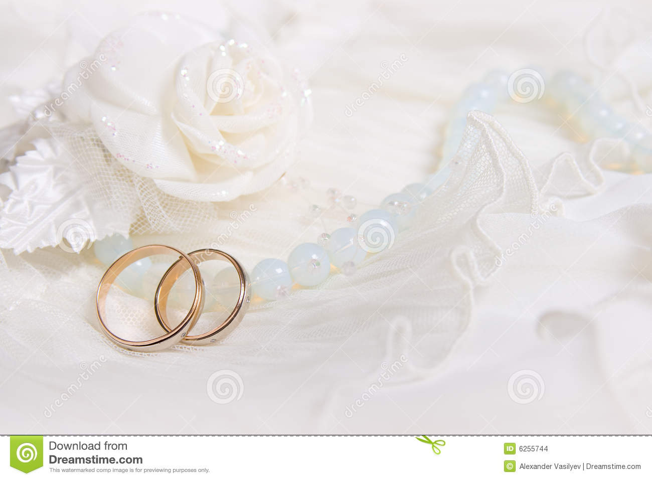 Wedding Rings And White Rose Stock Images Image 6255744