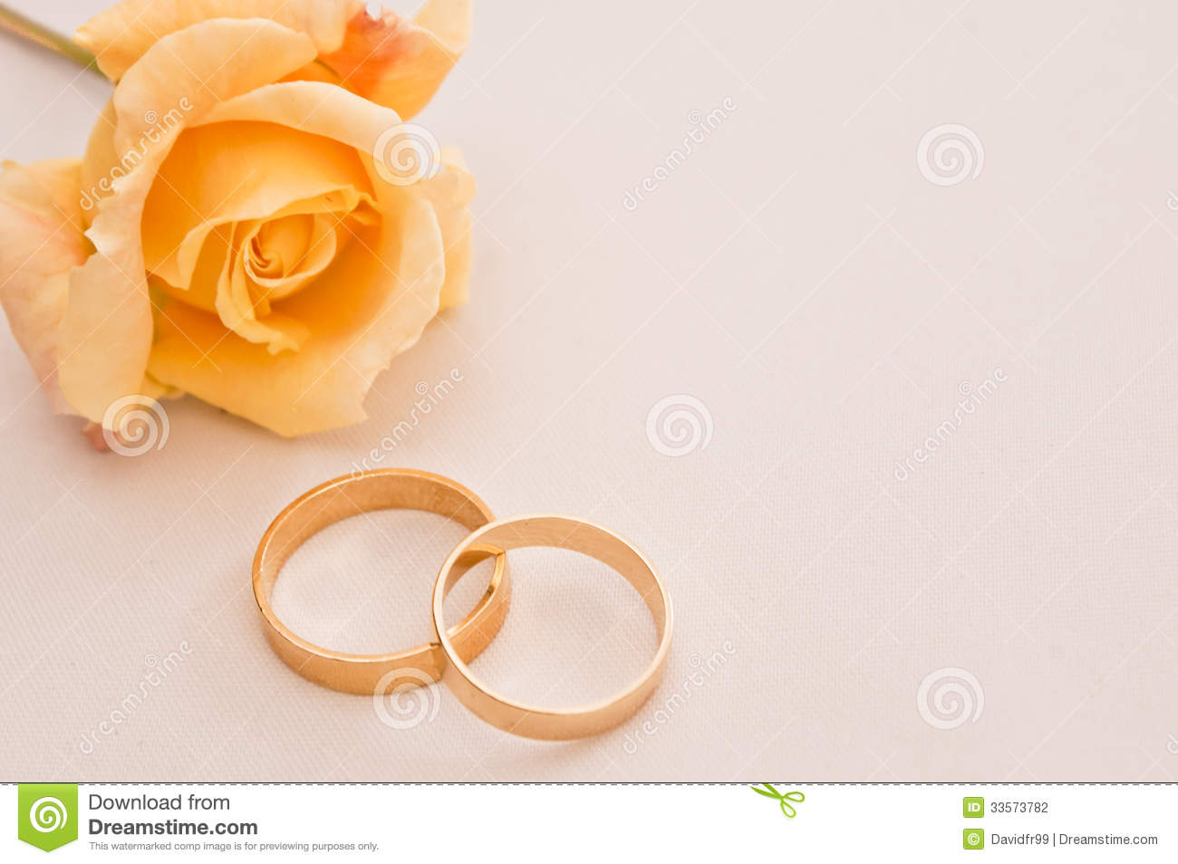 Wedding Rings On A Cream Background With Yellow Rose Space To Add Copy: Yellow Roses Wedding Rings At Reisefeber.org