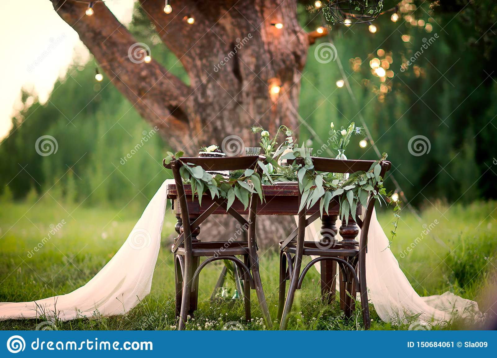 Wedding Rustic Table For Two In The Field At The Pine Tree Stock Image Image Of Background Beautiful 150684061