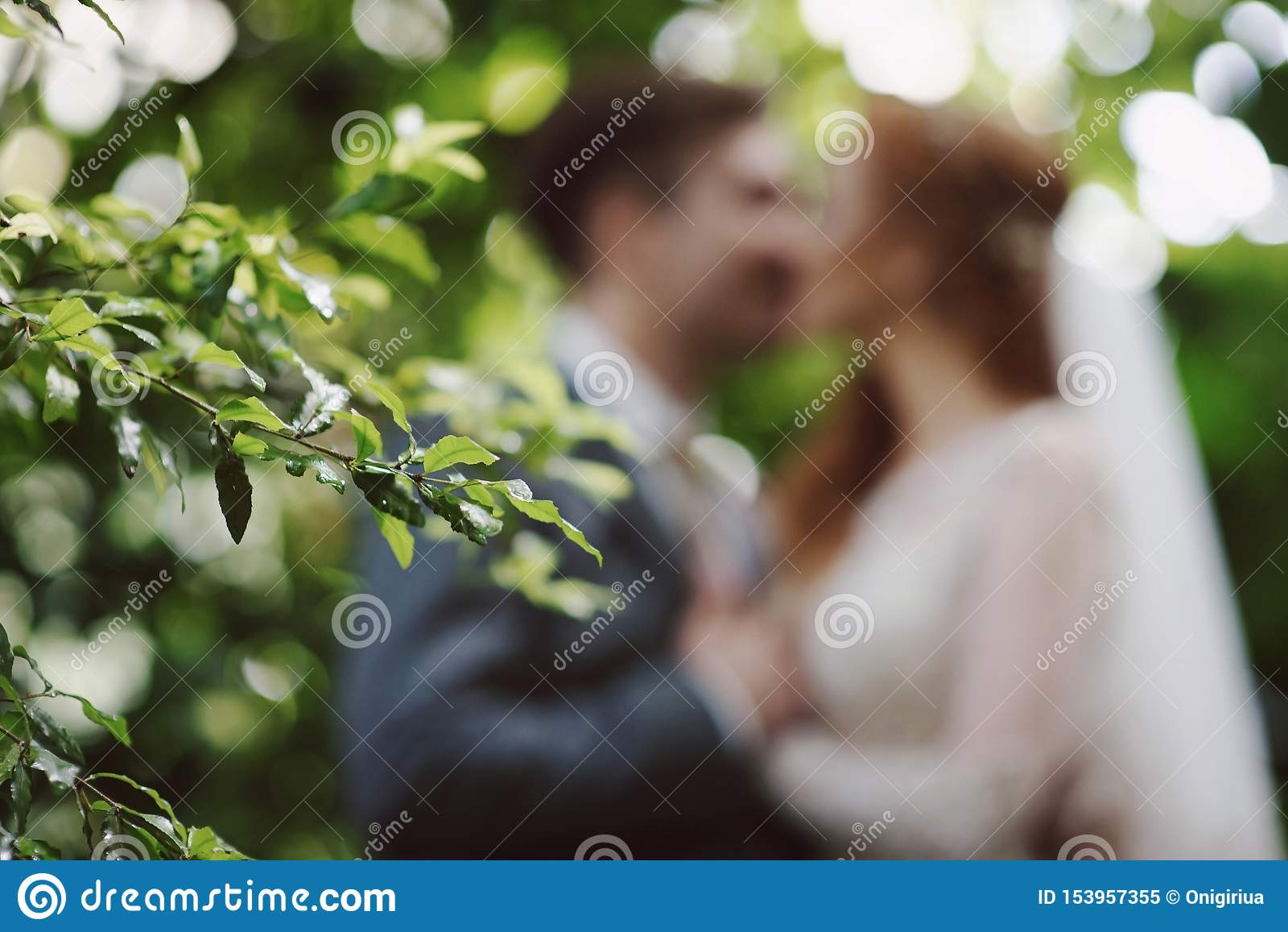 Wedding style abstract blurred background bride and groom kissing in park