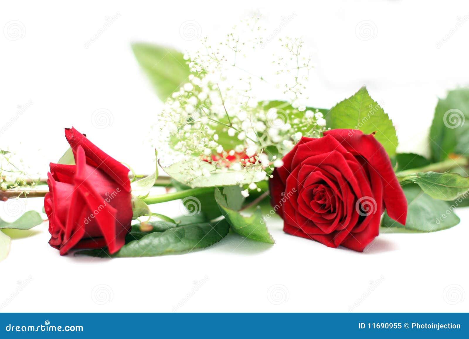 Wedding table decoration rose stock image image 11690955 - Deco table rose ...