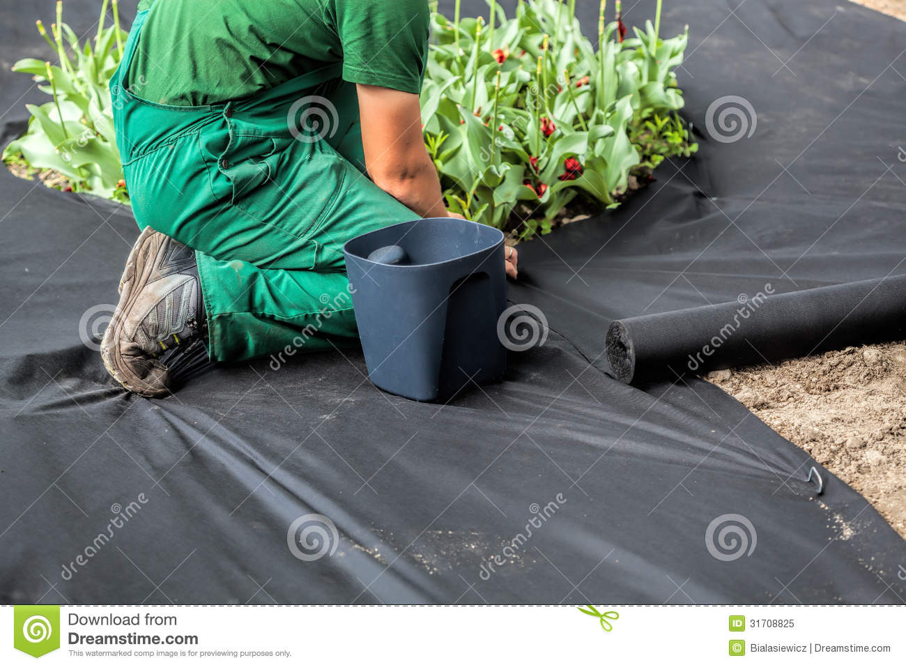 Design Weed Barrier weed barrier stock photo image 25178630 more similar images of barrier