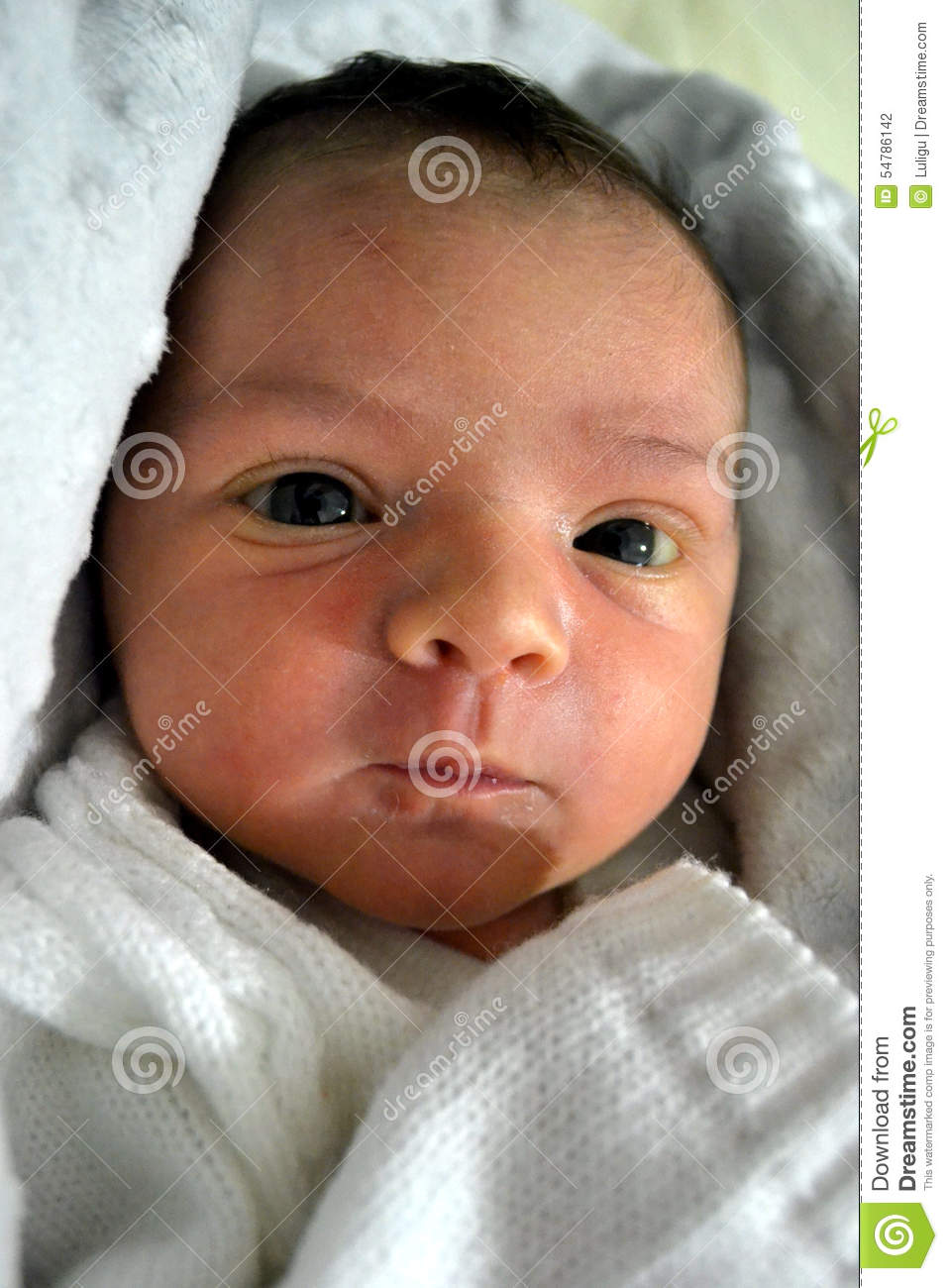 1 week old baby stock photo image of looking baby child 54786142