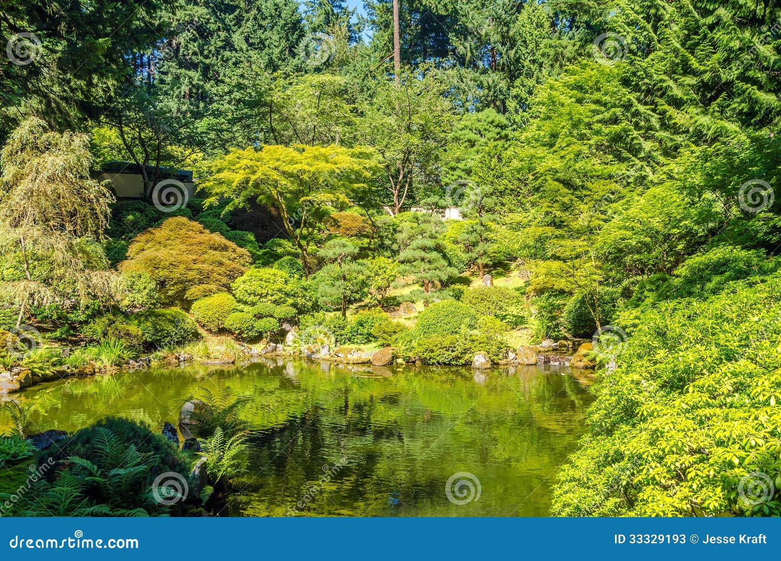 Weelderige tuin en vijver stock afbeelding afbeelding for Tuin en vijver