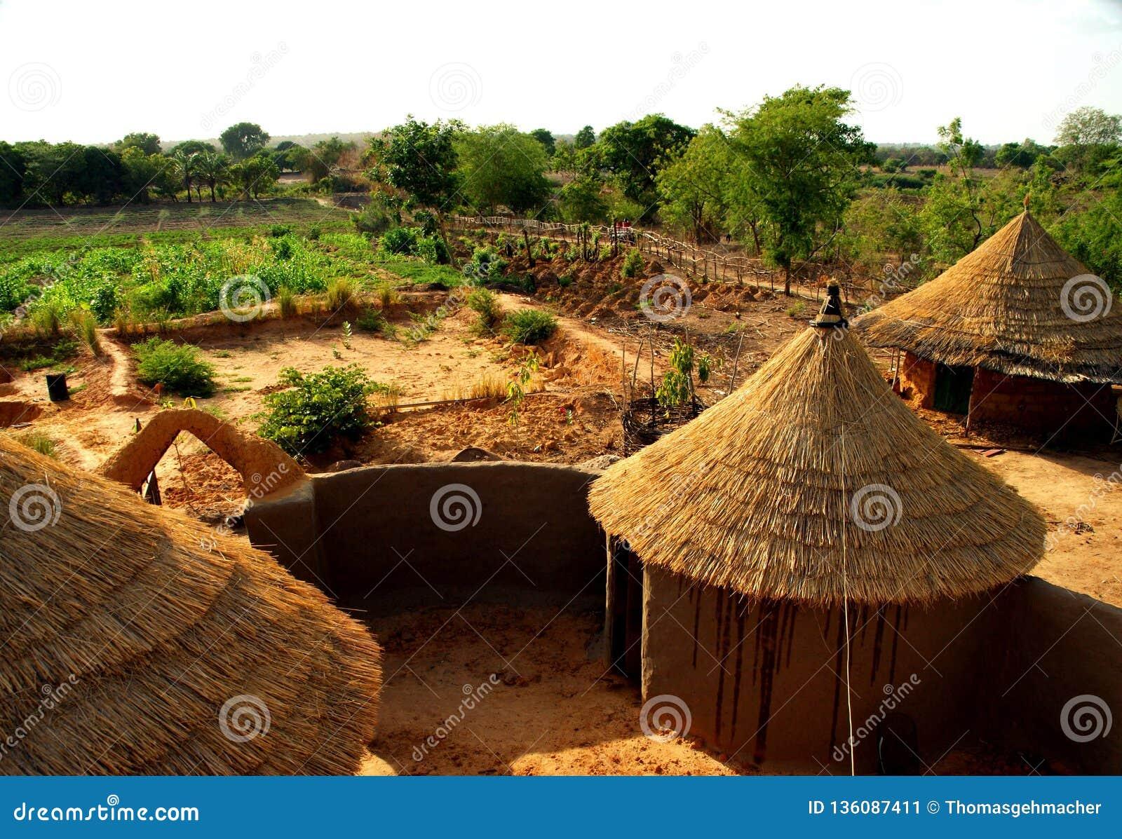 Weergeven op de gebieden op een organisch landbouwbedrijf in het droge noorden van Ghana