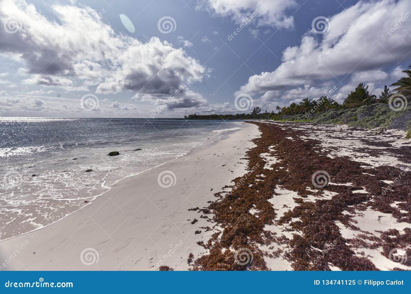 Weergeven van xpu-Ha strand #2