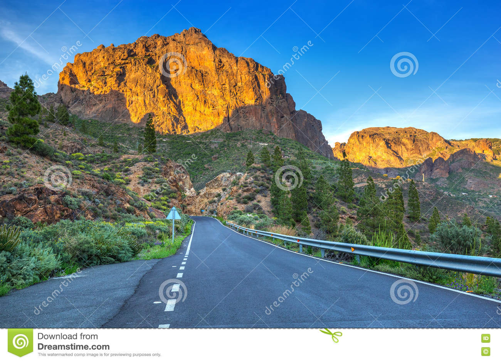 eskorte bergen gran canaria escort
