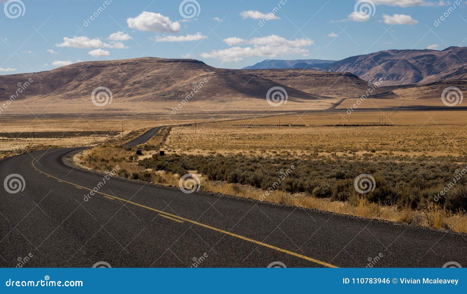Weg door hoge woestijn van oostelijk Oregon