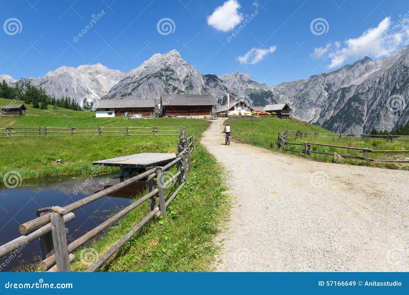 Schone Sommer Berglandschaft mit roten Mohn und wei?e Kamille ...