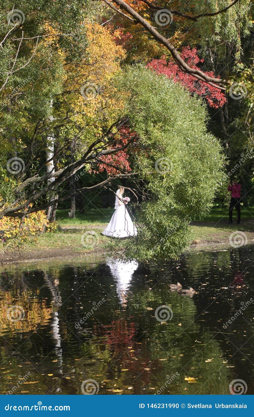 Weg im Park im Fall Reflexion im Wasser Braut