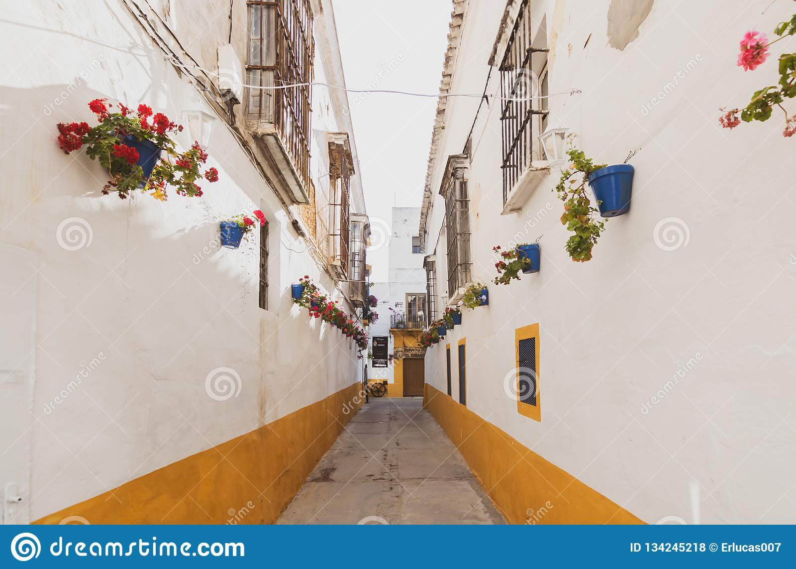 Weg mit dem Hund durch Sanlucar de Barrameda