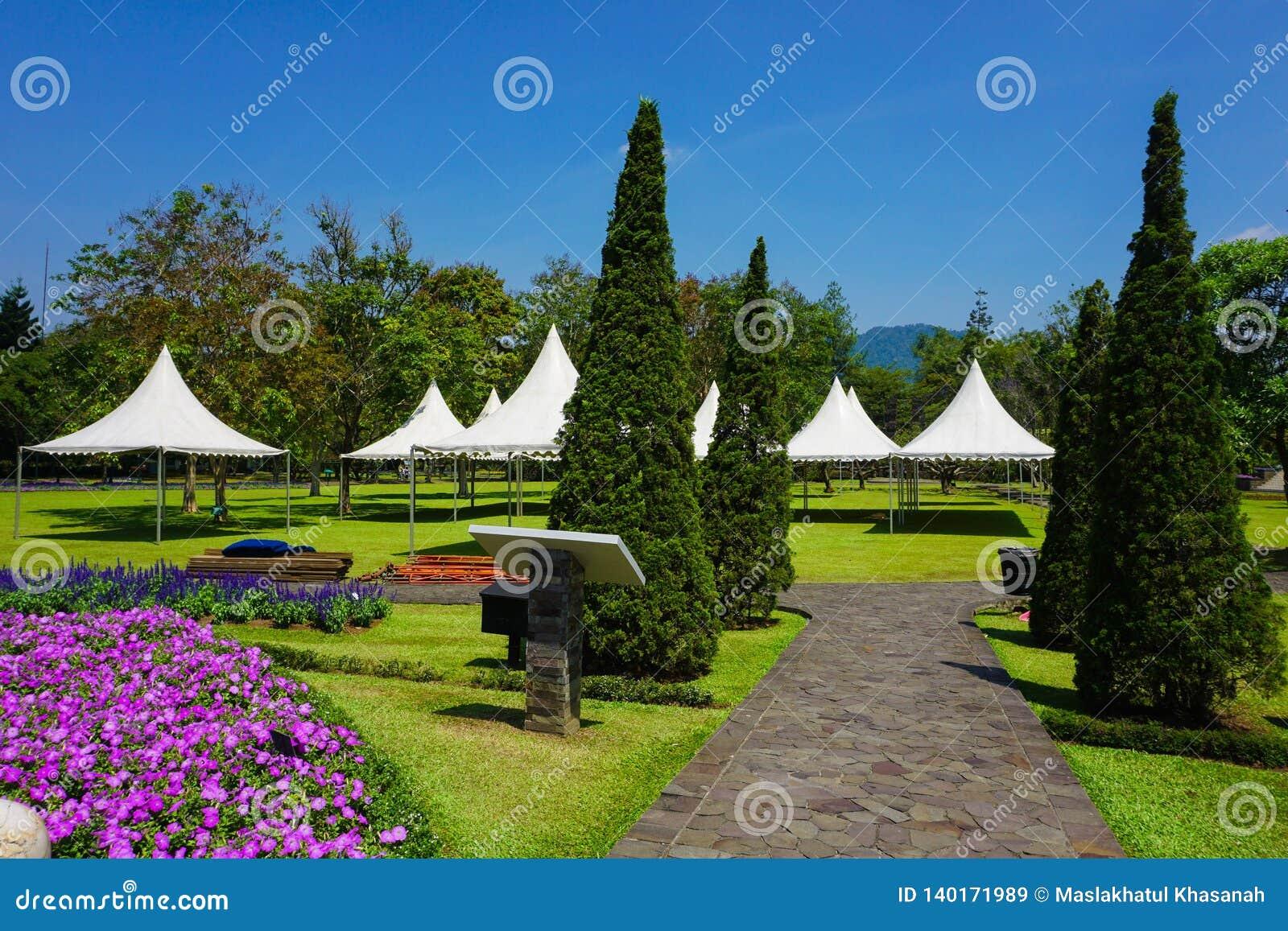 Weg van steen met het gaan naar witte tent op het park - bogor van fotoindonesië