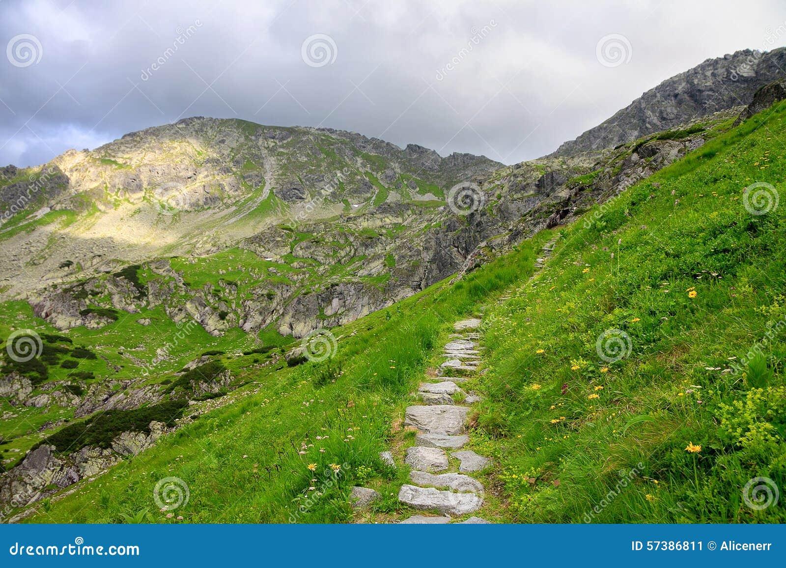 Weg van stenen door groene heuvel in bergen wordt gemaakt die