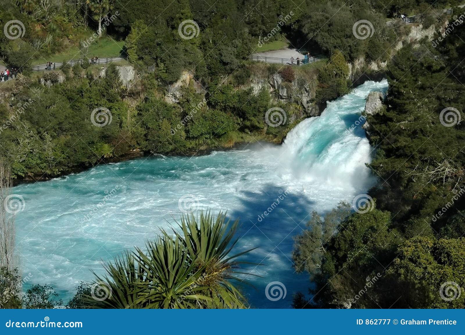 Weiß und Knickenten-Wasserfall