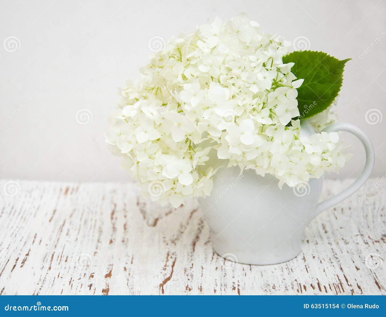 wei e hortensie in einem vase stockfoto bild von sommer nave 63515154. Black Bedroom Furniture Sets. Home Design Ideas
