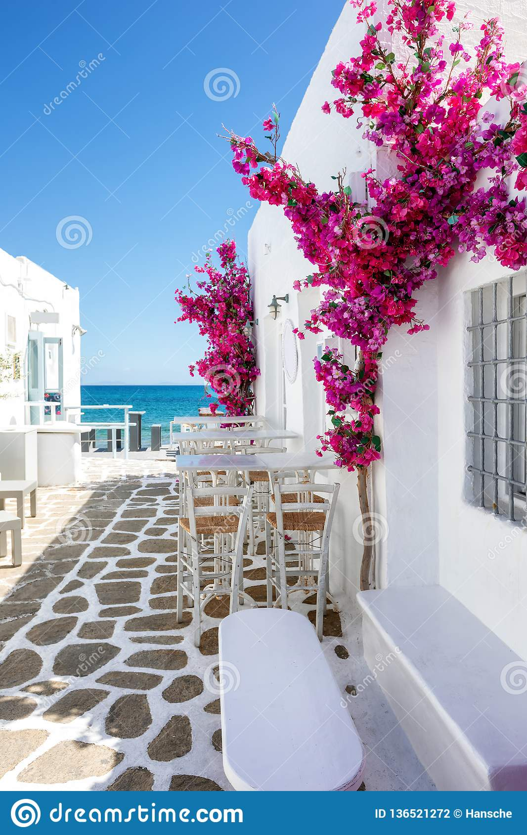 Weiße kleine Gasse und Häuser mit roten bouganvillea Blumen in Paros-Insel