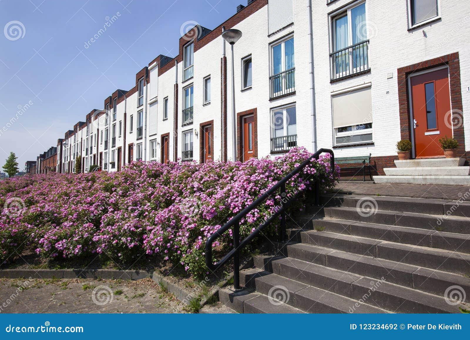 Weiße moderne Häuser in Folge