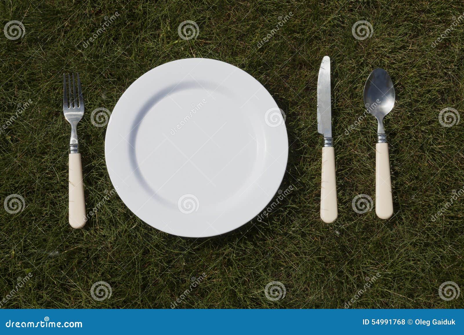 Weiße Platte auf Gras