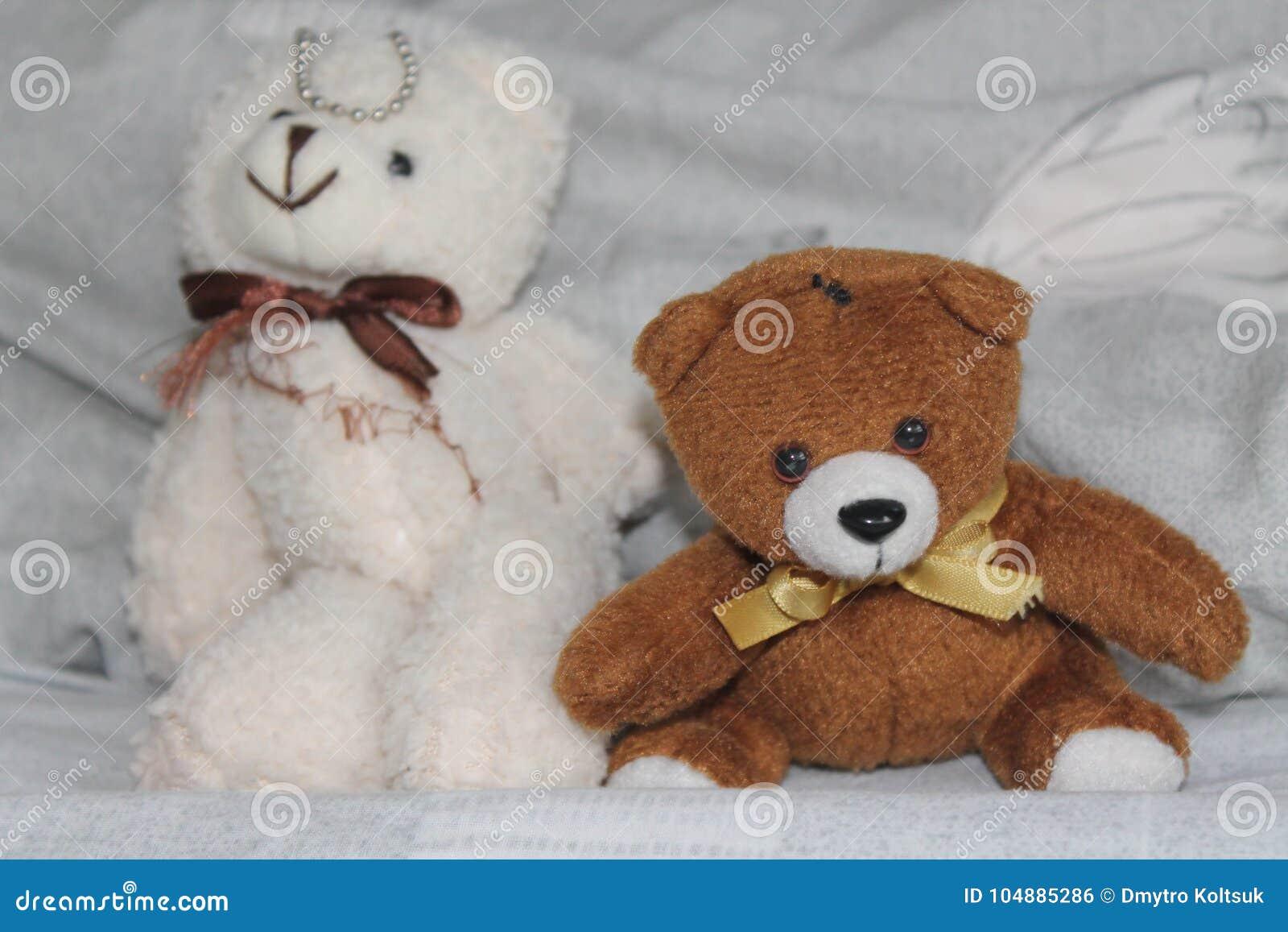 Weiße und schwarze Bären spielen das Sitzen auf dem Bett