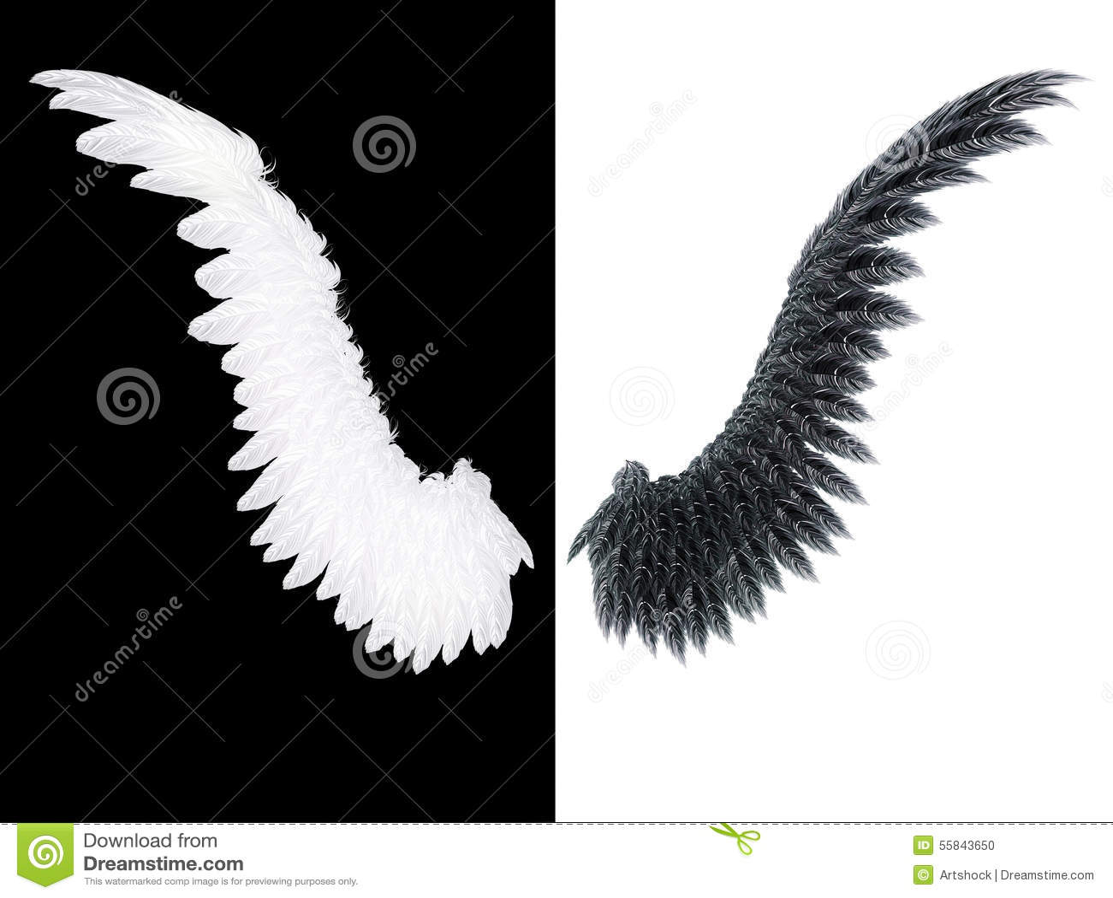 Weißer und schwarzer Flügel